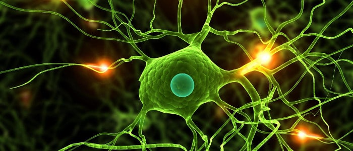 The side effects and benefits of Alpha Brain