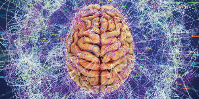 The process of hacking and improving a brain